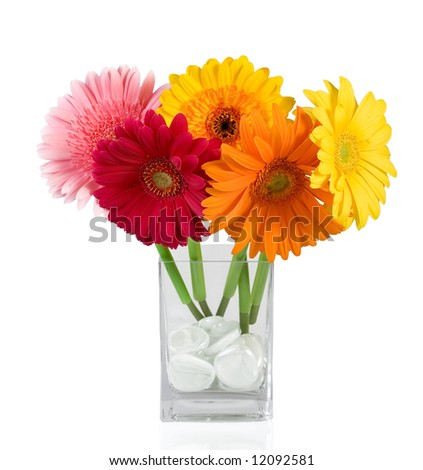 Flowers On White - stock photo