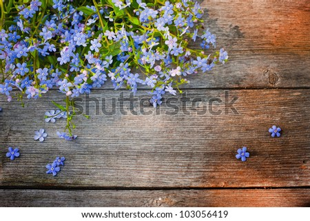 flowers on wooden background - stock photo