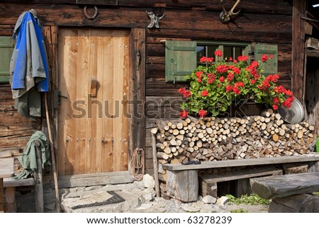 Flowers outside the window - stock photo