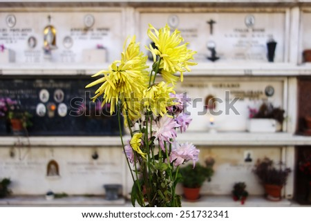 flowers over a  blurred cemetery tombstone background - stock photo