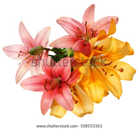 Flowers pattern. Pink and orange lilies isolated on white - stock photo