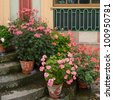 Flowers pots on steps of Chinese Pavilion of Drottningholm Palace, Drottningholm, Stockholm, Sweden - stock photo