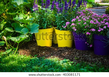 Flowers pots stand in the garden, close-up - stock photo