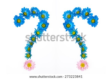 flowers question mark. Abstract question mark flower. - stock photo