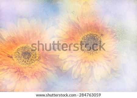 flowers soft blur in vintage pastel tones - stock photo