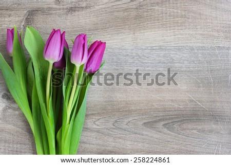 flowers tulips vintage wood background - stock photo