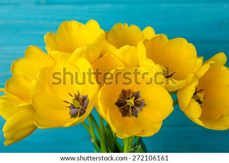 flowers tulips yellow bouquet on blue - stock photo
