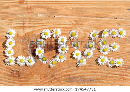 Flowers with love on board - stock photo