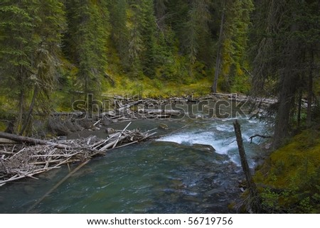 Flowing River in the Canadian Rockies - stock photo