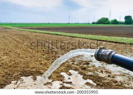 Flowing water from hose on agricultural field during irrigation - stock photo