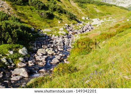 Flowing water in Five Lakes Valley in High Tatras, Poland - stock photo