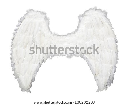 Fluffy angel wings isolated on white background - stock photo