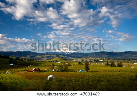 Fluffy Clouds over hood river valley and mount hood - stock photo