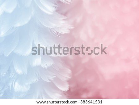 Fluffy elegant serenity blue feather on rose quartz pink soft focused background - Fashion Color Trends Spring Summer 2016 and Color of the Year - stock photo