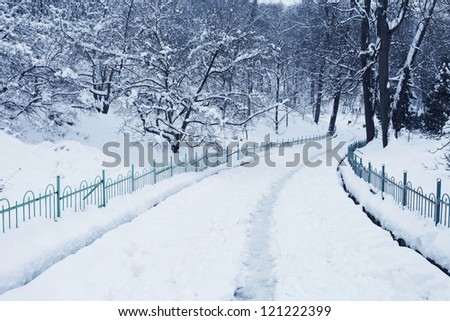fluffy snow on trees and pathway in winter park - stock photo