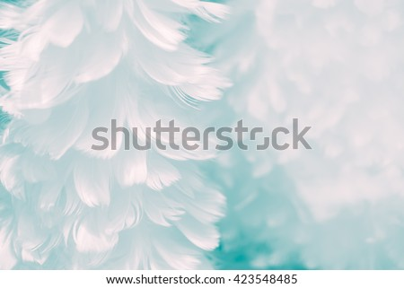 Fluffy white feather angel wings closeup on baby blue colored background - Fashion Color Trends Fall Winter 2016 2017 Set 2 - and light turquoise to Immature Blue color of Spring Summer 2017 - stock photo