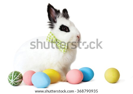 Fluffy white rabbit with Easter eggs isolated on white background. - stock photo