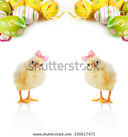 Fluffy yellow chicks and Easter Eggs - stock photo