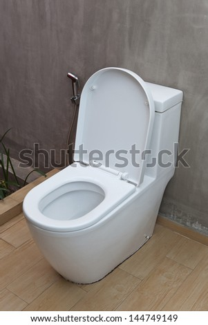 Flush toilet and sprayer in the exposed concrete wall bathroom - stock photo