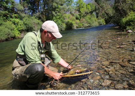 Fly-fisherman in water catching brown trout fish