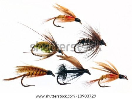 Fly fishing lures isolated - stock photo