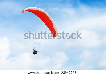 fly in the blue sky - stock photo