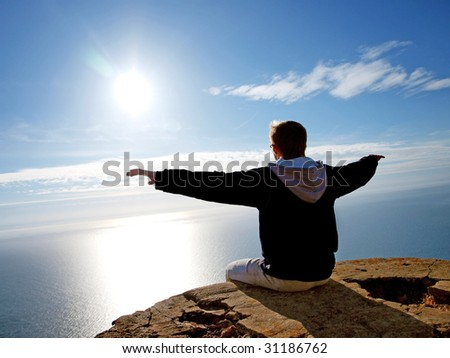 Fly to sun. Element of design. - stock photo