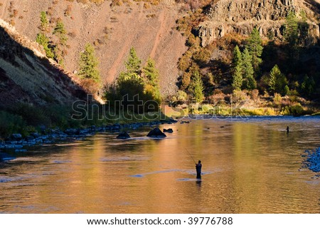 Flyfishing for steelhead on a beautiful river - stock photo