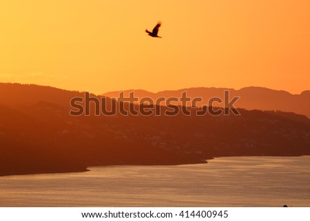 Flying across Bergen, Norway in the sunset.