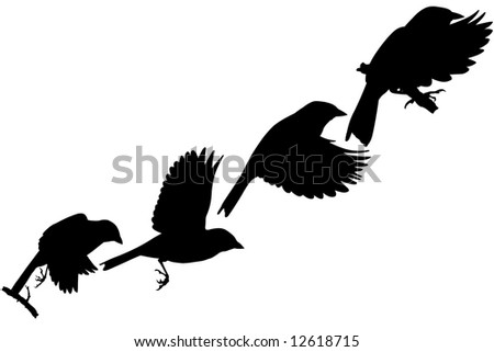 flying bird - stock photo