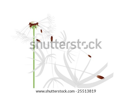 Flying dandelion in the wind with perspective view