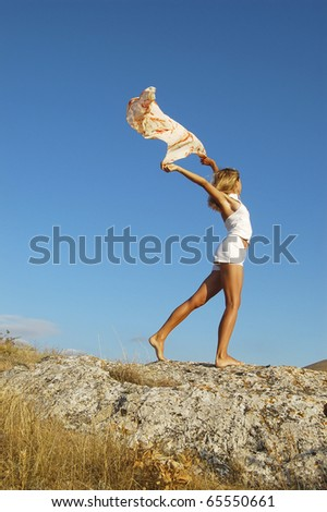 flying freedom - stock photo