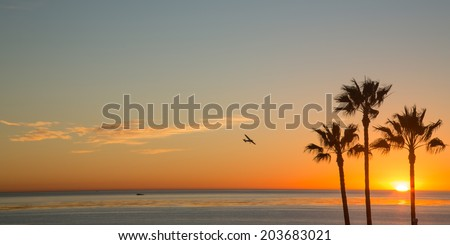 Flying into San Diego at Sunset - stock photo
