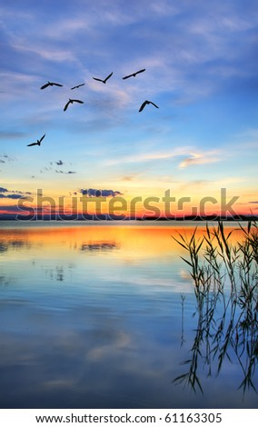 flying over the lake - stock photo