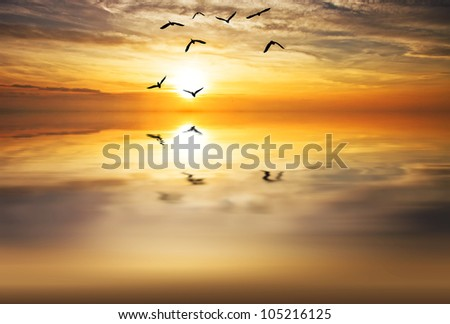 flying over the sea - stock photo