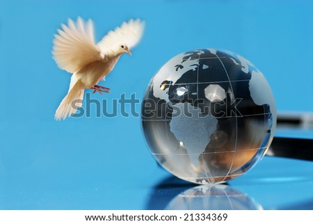 flying white dove against blue and globe