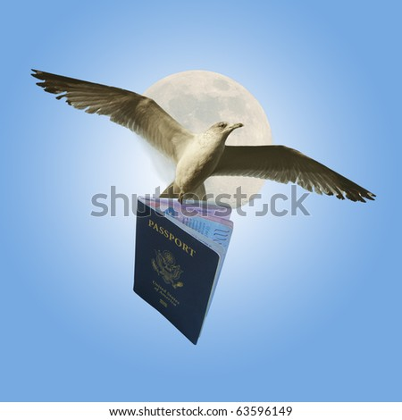 Flying With American Passport - stock photo