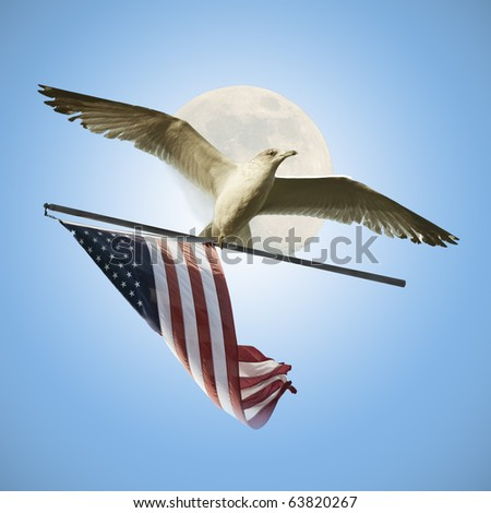 Flying with USA Flag - stock photo