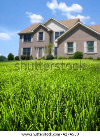 Focus on front lawn with house in background. - stock photo