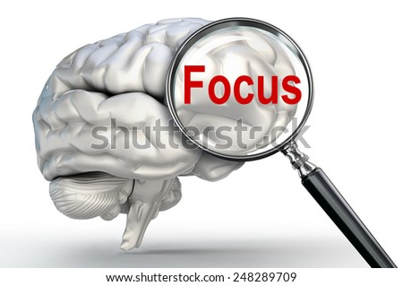 focus word on magnifying glass and human brain on white background - stock photo