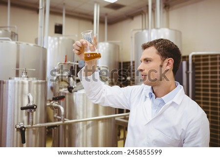 Focused brewer examining beaker with beer in the factory - stock photo