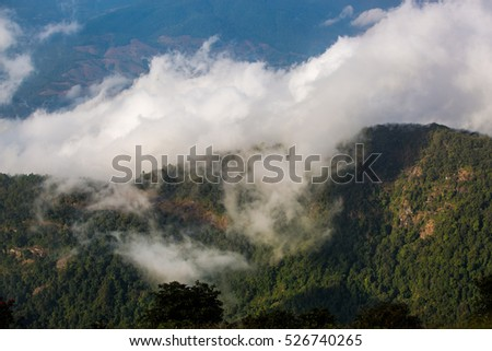 Fog and cloud mountain valley landscape,  Doi inthanon national park. Chiang mai Thailand.