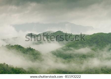 fog and cloud mountain valley landscape, Phetchabun,Thailand - stock photo