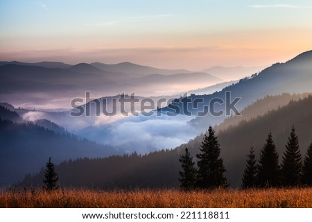 fog and cloud mountain valley landscape, Ukraine - stock photo