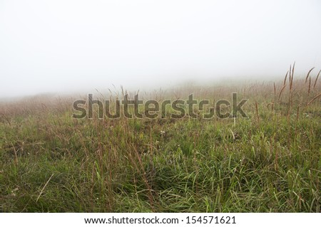 fog clearing  - stock photo