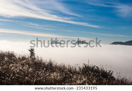 Fog covering the mountain forests, Ukraine, fall - stock photo