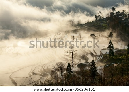 Fog enveloped the Chinese Yunnan Yuanyang rice terraces - stock photo