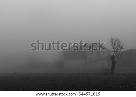 Fog  in Cubillo del Sil village, Leon province, Spain