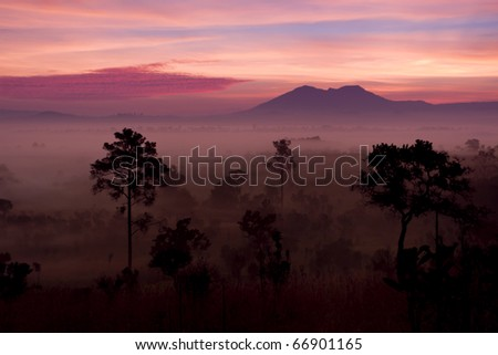 Fog in Thailand - stock photo