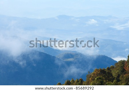Fog in the morning on the top of mountain in Thailand